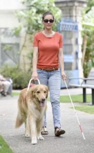 Blinde Frau mit Blindenhund